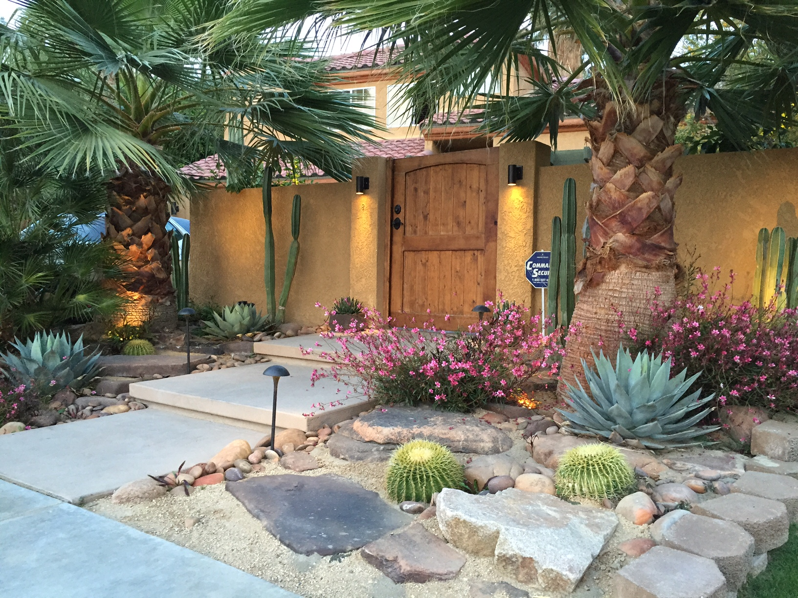 Drought Tolerant Plants Landscape Design