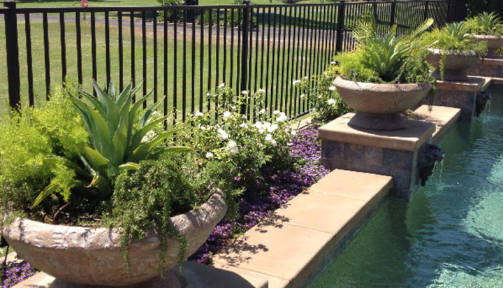desert landscaping alternatives hanson remodels landscapes
