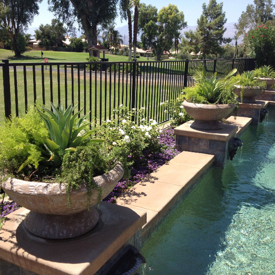 pool landscaping palm springs